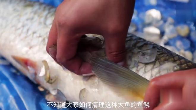 鱼肉这种做法你见过吗?越吃越上瘾,6斤重的草鱼不够吃!